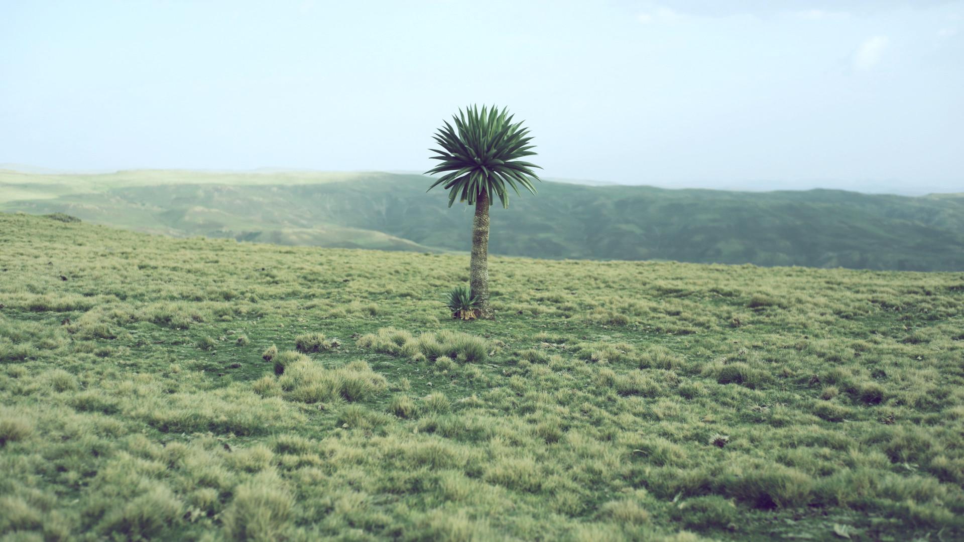 150520_Ethiopia_edit.jpg